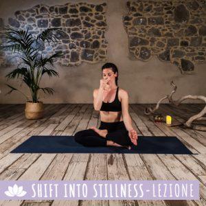 Shift into Stillness